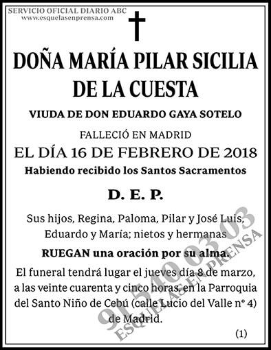 María Pilar Sicilia de la Cuesta
